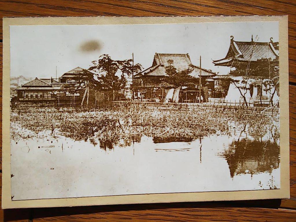 上野不忍池鶏卵紙写真