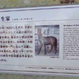島 雪斎越前國三国